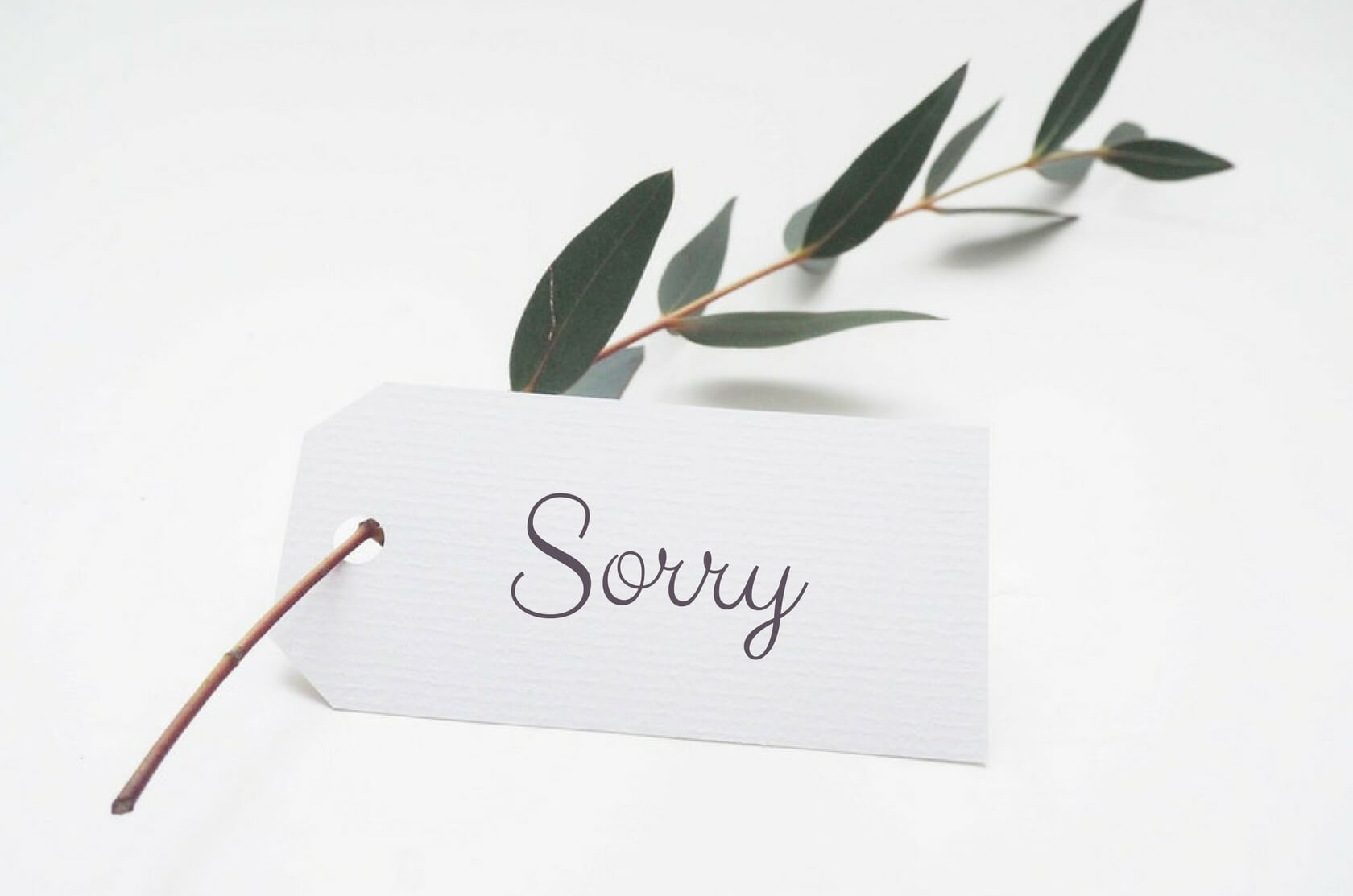 Common English word: Sorry